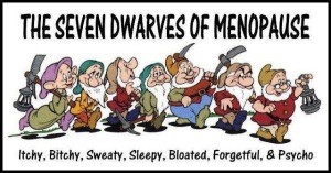 seven-dwarves-menopause-funny-cartoon