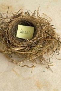 Vacant empty nest