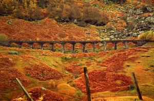 Autumn viaduct