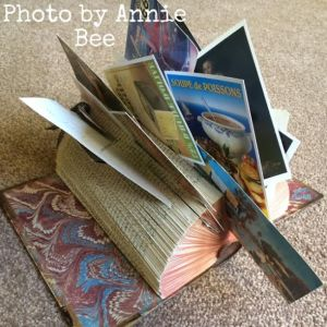 Annie Bee's book art
