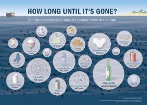 decomposition of rubbish in sea