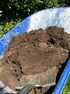 Black gold. Compost. Loam from a turf stack