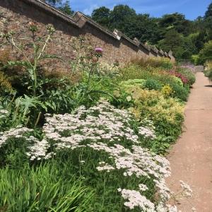 Knightshayes walled garden